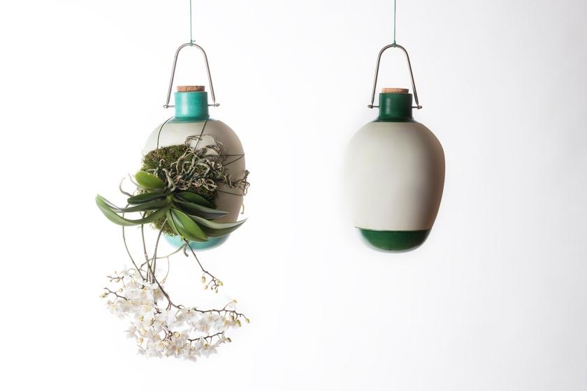 Epiphytes by Dossofiorito