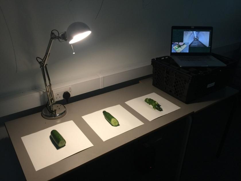 A simulation of cutting the cucumber